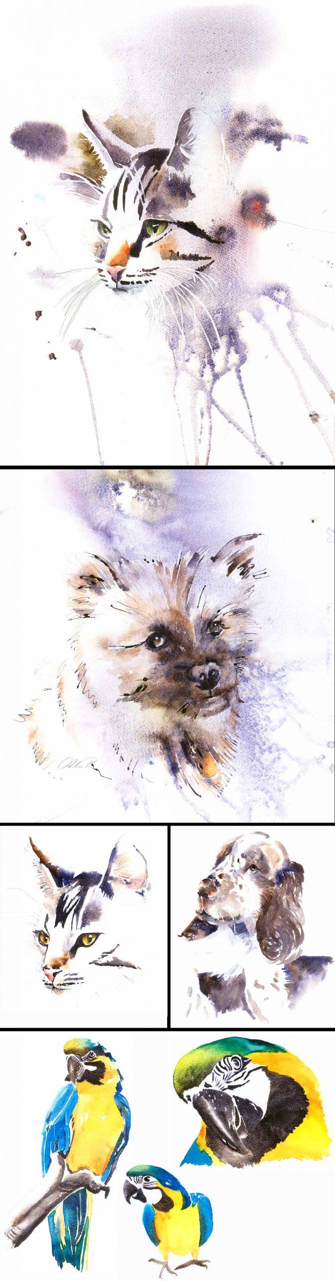 pio-akvarel maler dyreportrætter